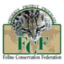 F2 Savannah Cats MI